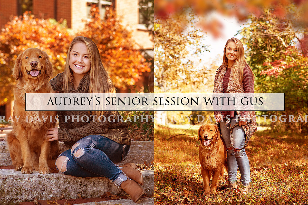 Senior Photographer in Louisville KY photographs girl with golden retriever dog